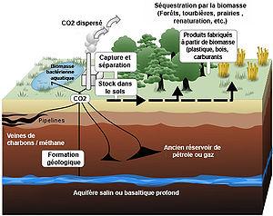 Représentation schématique de certains moyens de stocker le dioxyde de carboneillustration: Wikipédia